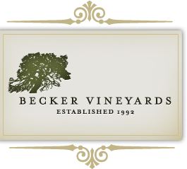 Becker Vineyards - Stonewall Texas