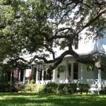 Green Pastures Restaurant – Austin Texas