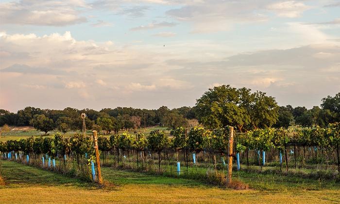 The Vineyard at Florence - Florence, TX